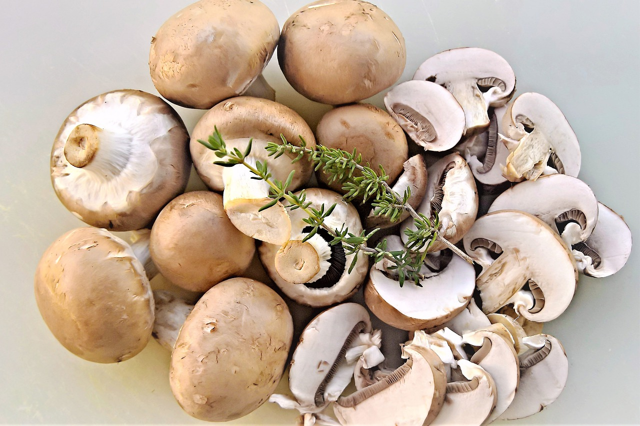 recette croûte aux champignons