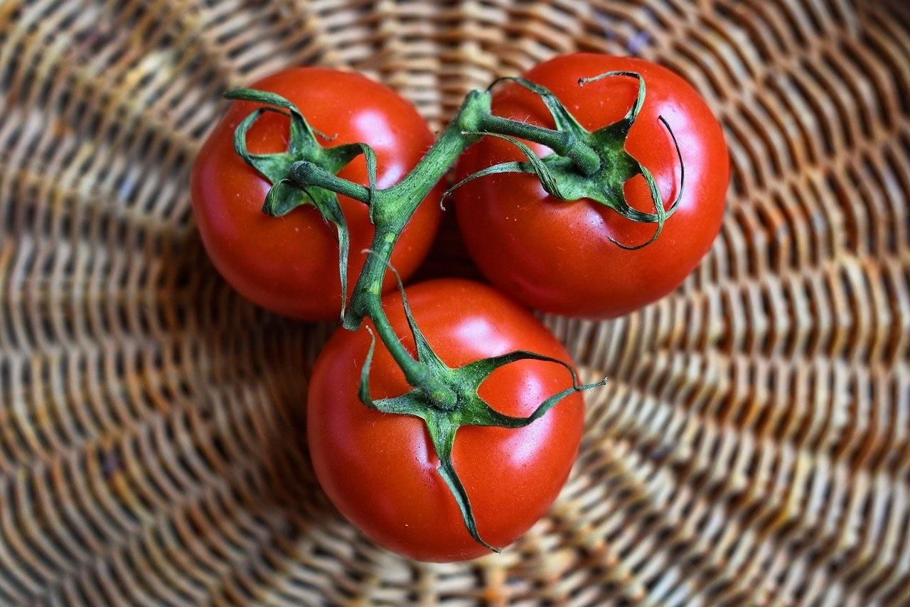 recette tarte thon, tomates et moutarde