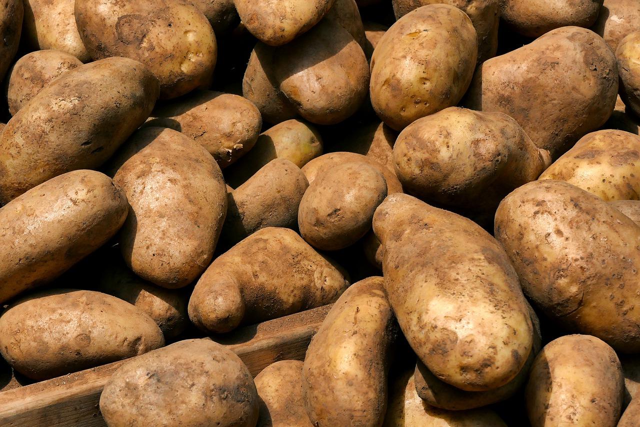 recette des pommes de terre au four